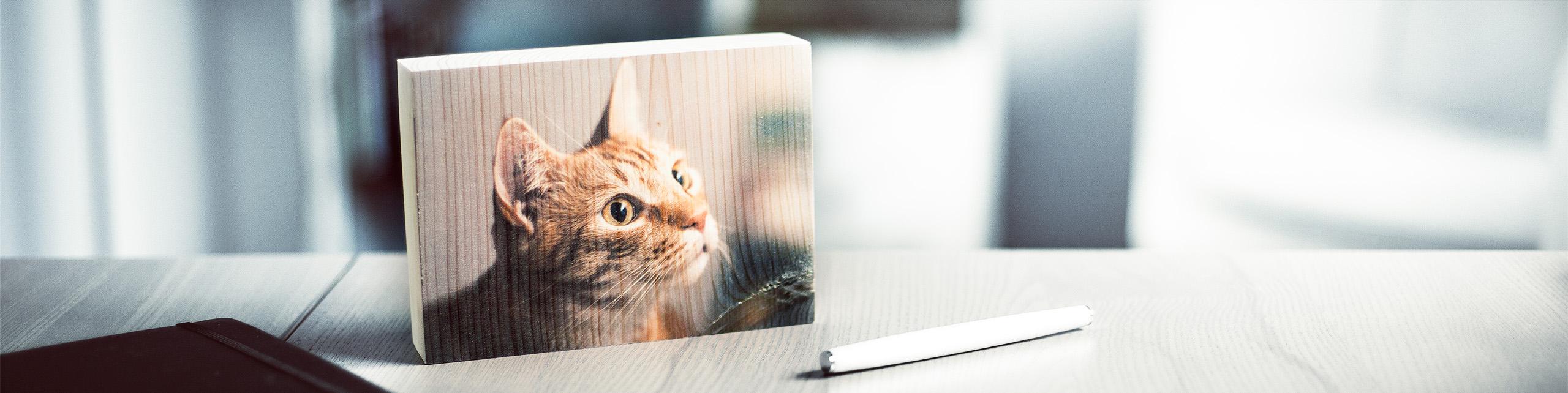 Foto auf Holz Fichte Holzdruck