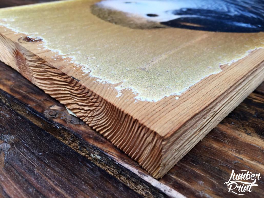 foto auf holz holzdruck s papagei 2 lumberprint. Black Bedroom Furniture Sets. Home Design Ideas